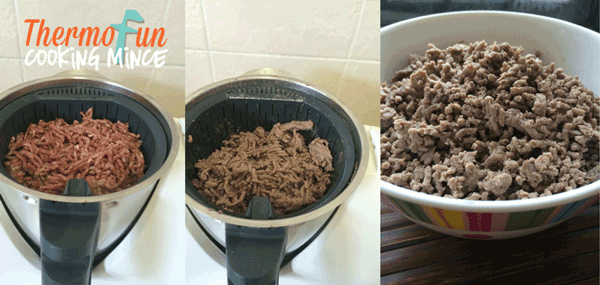 ThermoFun – Everyday Basics – Cooking Mince