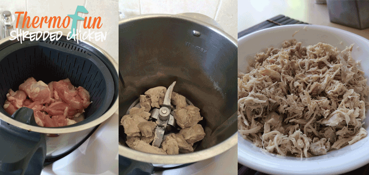 ThermoFun – Everyday Basics – Shredded Chicken