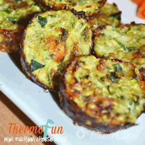 ThermoFun – Mini Zucchini Cheese Bites Recipe