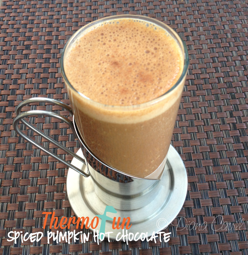 ThermoFun – Thirsty Thursday – Spiced Pumpkin Hot Chocolate Recipe