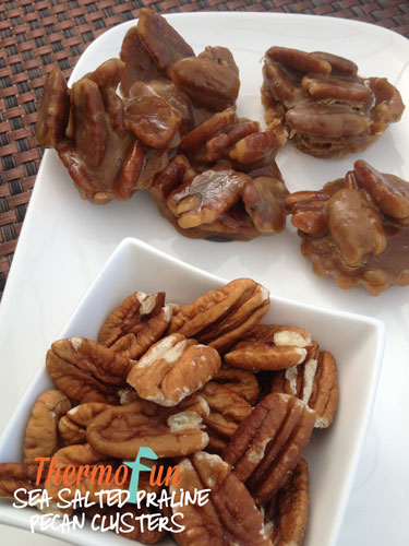 ThermoFun – Sea Salted Praline Pecan Clusters Recipe