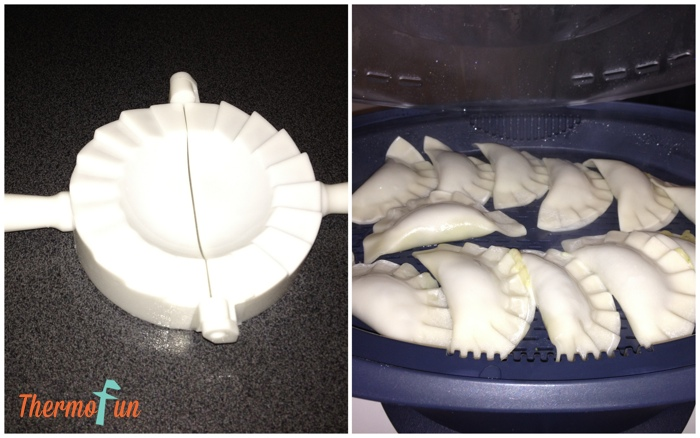 ThermoFun wonton maker