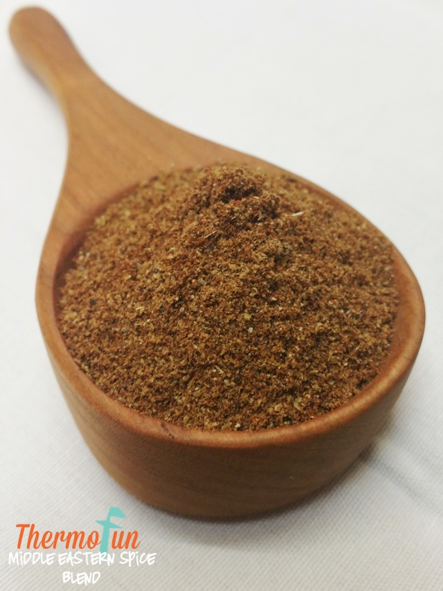 ThermoFun – Middle-Eastern Spice Blend Recipe