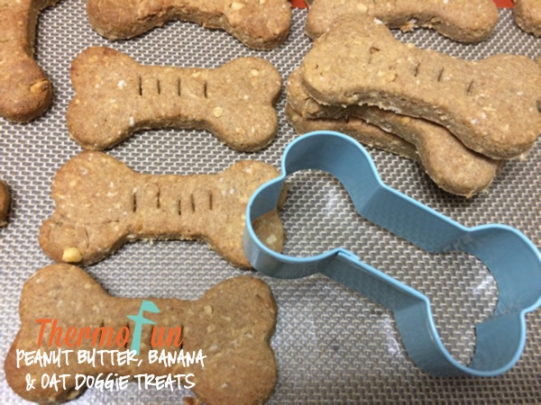 ThermoFun – Member Spotlight – Peanut Butter, Banana and Oat Doggy Treats Recipe