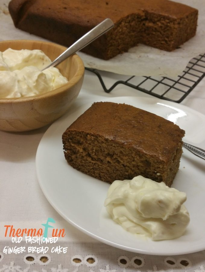 KIDtastic Friday – Old-Fashioned Gingerbread Cake – ThermoFun